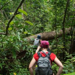 nicaragua wildlife jungle hike