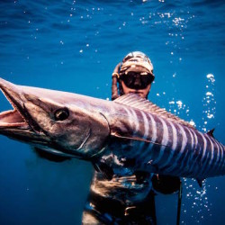 spearfishing nicaragua
